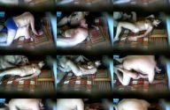 Image Hot indian XXX call girl sex in hotel